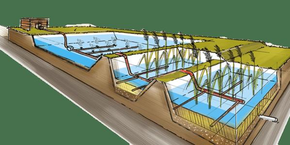 traitement-effluents